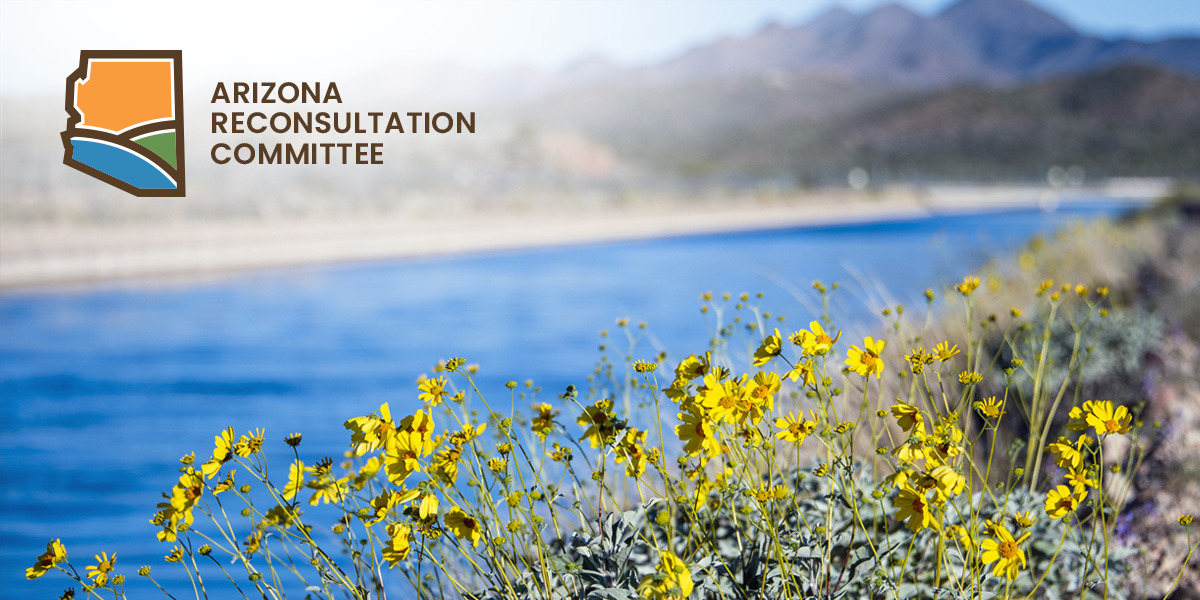CAP Arizona Reconsultation Committee
