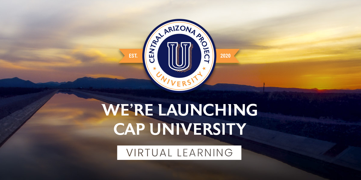 Launch of CAP University