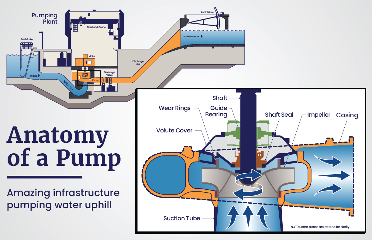CAP Infographic Pumping Plant Anatomy